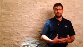 Steve Brennan - ACE2015 Student/YP Testimonial