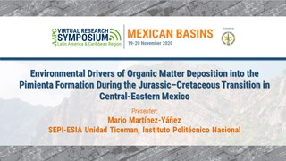 Environmental Drivers of Organic Matter Deposition into the Pimienta Formation During the Jurassic–Cretaceous Transition in Central-Eastern Mexico