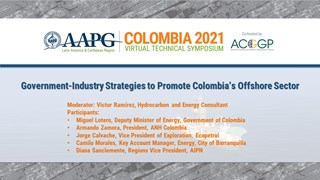 3D Seismic Acquisition based on Direct Hydrocarbon Indicators and Multiclient Programs in the Colombia Basin