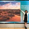 AAPG's Sustainable Future