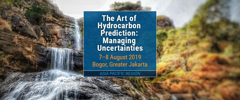 The Art of Hydrocarbon Prediction: Managing Uncertainties