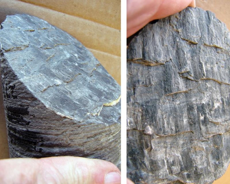 Two views of slickencrysts along an intermediate-angle, dip-slip shear fracture in a muddy shale. The missing block in both photos moved downward with a sense of normal shear as indicated by both bedding offset and the asymmetry of the steps developed in the calcite. Vertical 2-inch diameter core; uphole is towards the top in both photos.