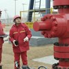 Shale Oil and Gas Exploration and Development - Prospects and Challenges GTW