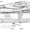 E-Symposium: Fluvial Stratigraphy