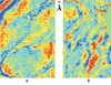 Footprints in Seismic Data