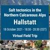 Salt tectonics in the Northern Calcareous Alps (Austria)