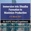 Immersion into Shuaiba Formation to Maximize Production