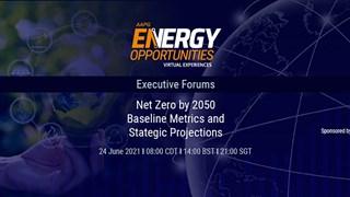Net Zero by 2050 - Baseline Metrics and Strategic Projections