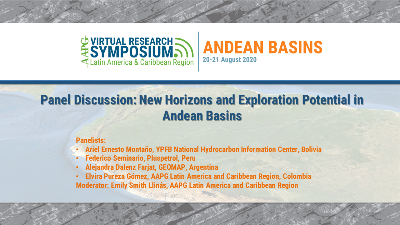 Panel Discussion: New Horizons and Exploration Potential in Andean Basins