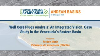 Well Core Plugs Analysis: An Integrated Vision. Case Study in the Venezuela's Eastern Basin