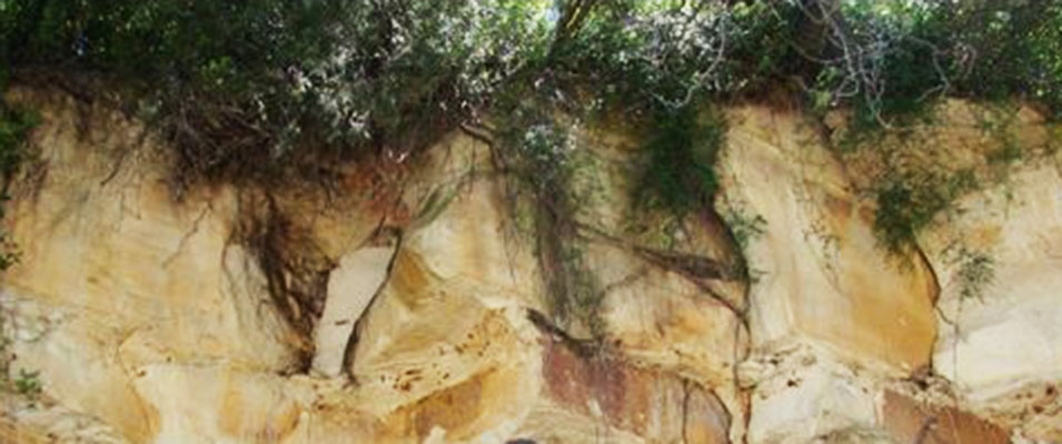 Genetic Sequences in Eagle Ford-Austin: Their Significance in Exploration and Development