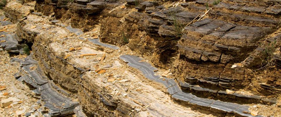 Green River Shales: Geochemical Basin Study