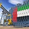 'Prisoner's Dilemma' of OPEC+ Keeps Oil Market Volatile