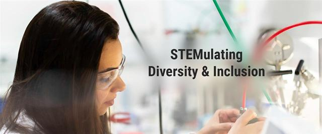 STEMulating Diversity & Inclusion Special Interest Group (SIG)