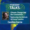 Climate Change and the Coronavirus: Relationships that Motiviate the Energy Transition - Spanish Talk