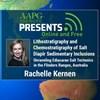Lithostratigraphy and Chemostratigraphy of Salt Diapir Sedimentary Inclusions: Unraveling Ediacaran Salt Tectonics in the Flinders Ranges, Australia