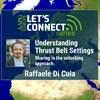 Understanding Thrust Belt Settings: Sharing is the unlocking approach
