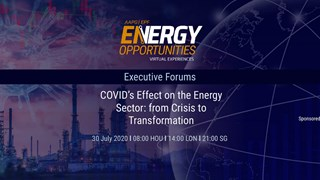 COVID's Effect on the Energy Sector: From Crisis to Transformation