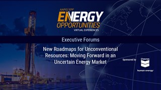 New Roadmaps for Unconventional Resources: Moving Forward in an Uncertain Energy Market