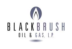 BlackBrush Oil & Gas, LP