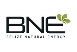 Belize Natural Energy Ltd